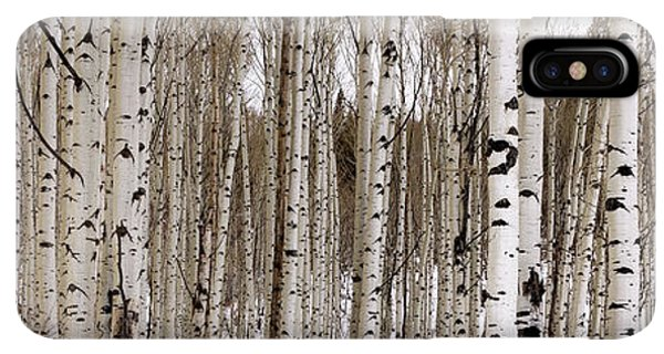 Rocky Mountain iPhone XS Max Case - Aspens In Winter Panorama - Colorado by Brian Harig