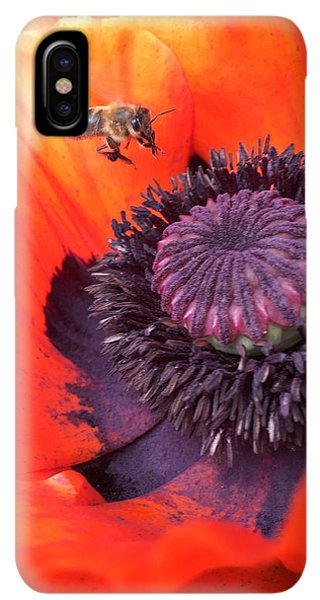 iPhone XS Max Case - Bee Is Visiting A Poppy by Orphelia Aristal