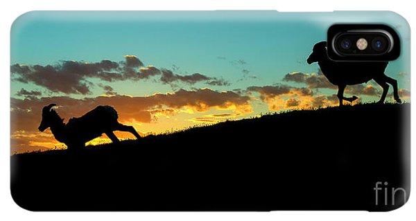 Rocky Mountain Bighorn Sheep iPhone XS Max Case - Bighorn Sunset by Mike Dawson