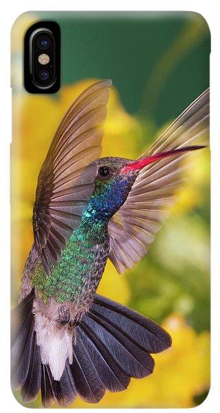 Humming Bird iPhone XS Max Case - Broad-bill Pose by Janet Fikar