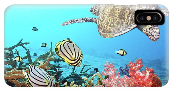 Scuba Diving iPhone XS Max Case - Butterflyfishes And Turtle by MotHaiBaPhoto Prints
