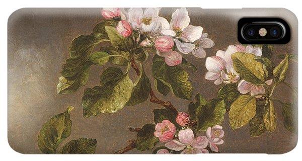 Humming Bird iPhone XS Max Case - Hummingbird And Apple Blossoms by Martin Johnson Heade