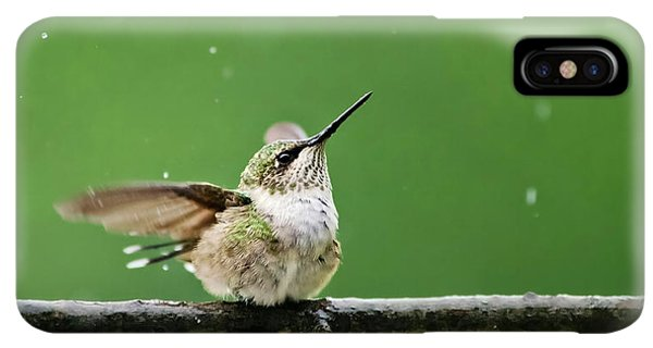 Humming Bird iPhone XS Max Case - Hummingbird In The Rain by Christina Rollo