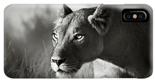 Africa iPhone XS Max Case - Lioness Stalking by Johan Swanepoel