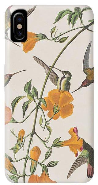 Humming Bird iPhone XS Max Case - Mango Humming Bird by John James Audubon
