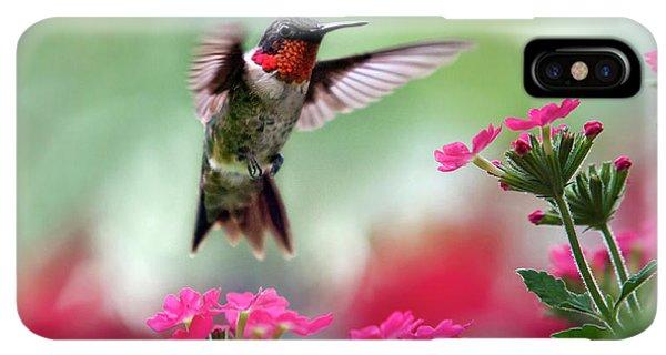 Humming Bird iPhone XS Max Case - Ruby Garden Jewel by Christina Rollo