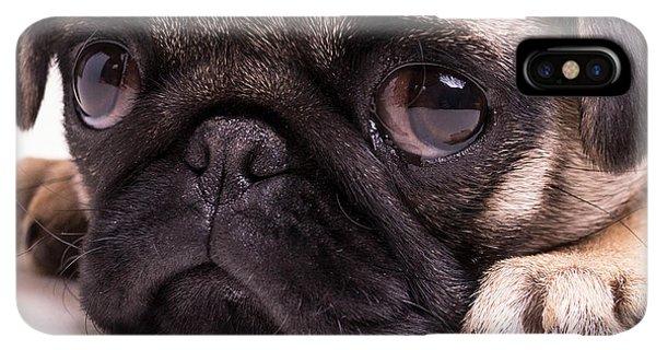 Pug iPhone XS Max Case - Sad Sack - Pug Puppy by Edward Fielding