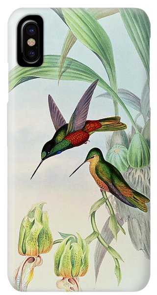 Humming Bird iPhone XS Max Case - Star Fronted Hummingbird by John Gould