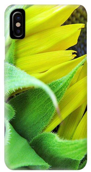 Sunflower Seeds iPhone XS Max Case - Sunflower by Marianna Mills