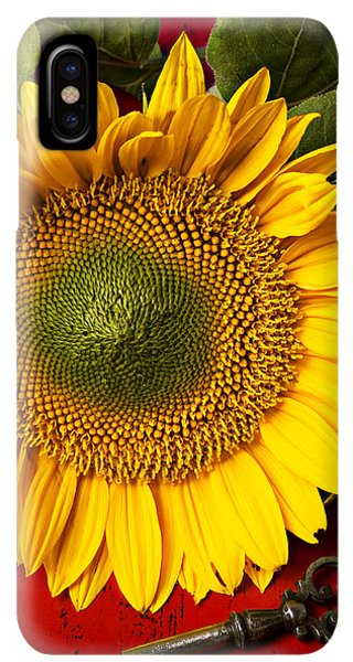 Sunflower Seeds iPhone XS Max Case - Sunflower With Old Key by Garry Gay