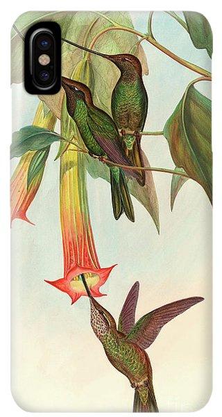 Humming Bird iPhone XS Max Case - Sword Billed Hummingbird by John Gould