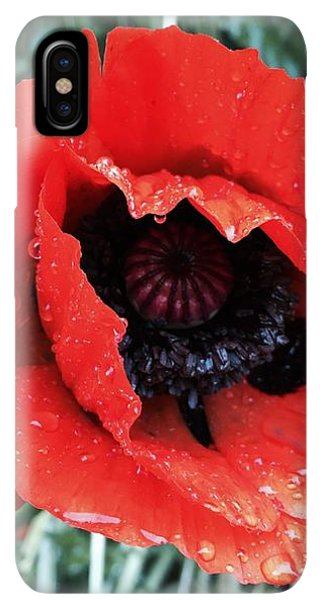 iPhone XS Max Case - Wet Poppy by Orphelia Aristal