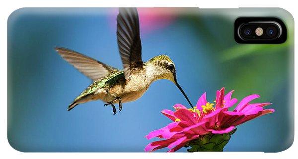 Humming Bird iPhone XS Max Case - Art Of Hummingbird Flight by Christina Rollo