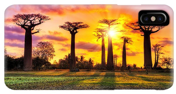 The Sun iPhone XS Max Case - Beautiful Baobab Trees At Sunset At The by Dennis Van De Water