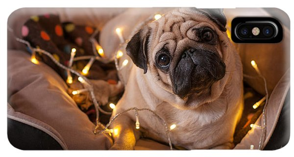Pug iPhone XS Max Case - Christmas Dog With Garland In Bed On by Nuraam