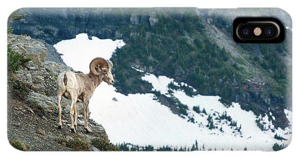 Rocky Mountain Bighorn Sheep iPhone XS Max Case - Crevace Ram by Todd Klassy