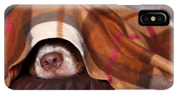 Puppies iPhone XS Max Case - Dog Sleeps Under The Blanket by Ivanova N