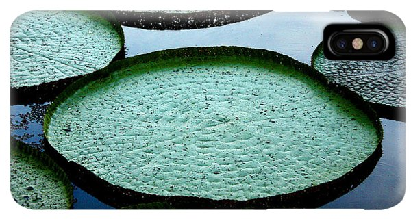 South America iPhone XS Max Case - Giant Lily Pads In The Amazon by Nina B