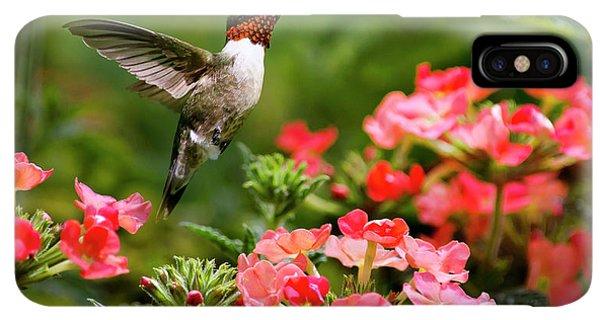 Humming Bird iPhone XS Max Case - Graceful Garden Jewel by Christina Rollo