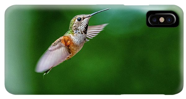Humming Bird iPhone XS Max Case - Humming Bird by Ian Stotesbury