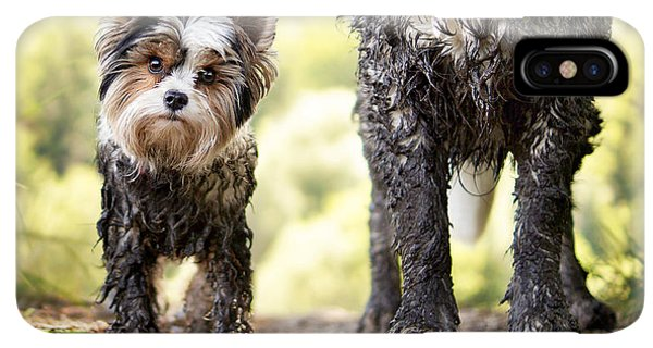 Puppies iPhone XS Max Case - Muddy Little Dog Stands Next To A Muddy by Stickler