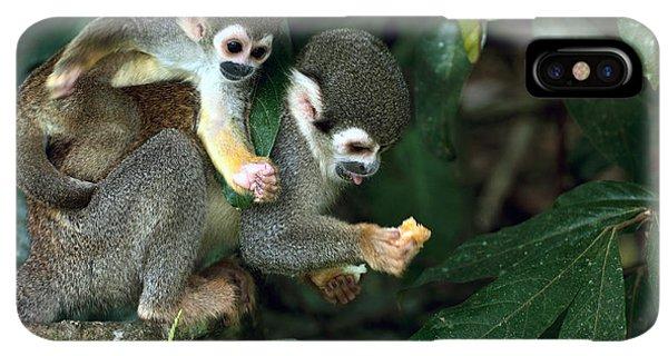 South America iPhone XS Max Case - Squirrel Monkey In Amazon Rainforest by Ksenia Ragozina