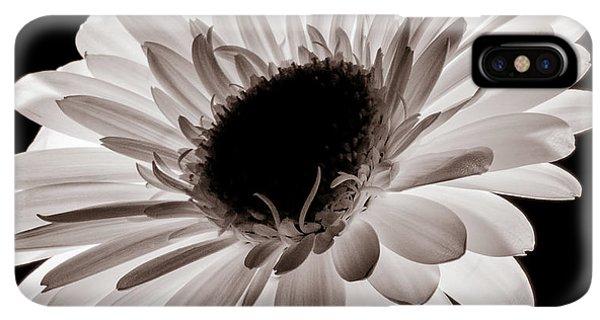 Sunflower Seeds iPhone XS Max Case - Sunburst by Dave Bowman