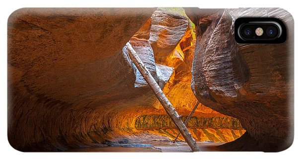 The Sun iPhone XS Max Case - Tree In The Subway - Left Fork In Zion by Andrmoel