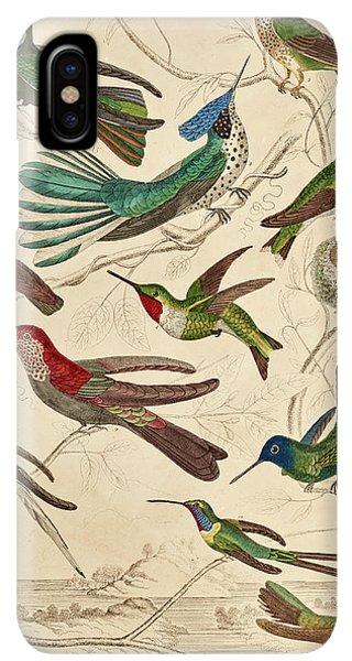 Humming Bird iPhone XS Max Case - Trochilus - Hummingbirds by William Davis