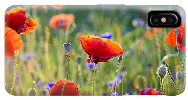 The Sun iPhone XS Max Case - Wildflowers Poppies by Mike Mareen