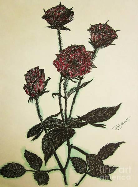 A Garden Rose Poster