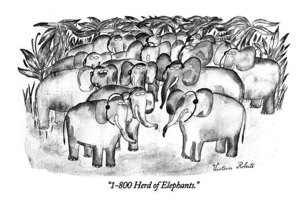 1-800 Herd Of Elephants Poster