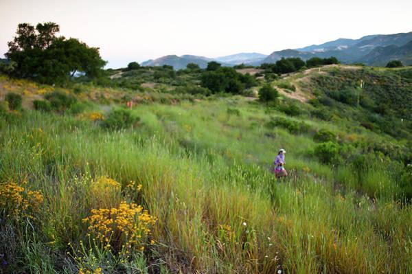 A Trail Runner Crosses Through Green Poster