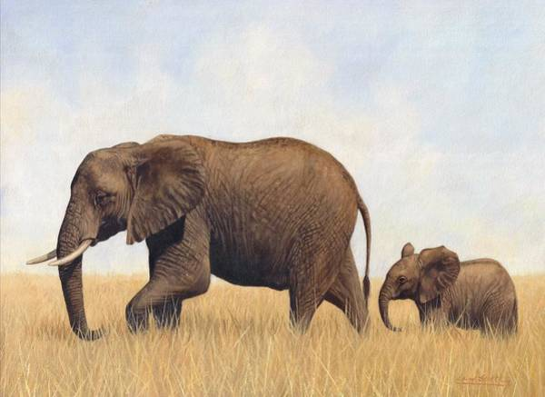 African Elephants Poster