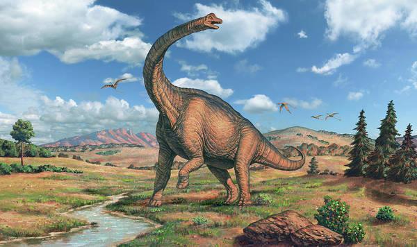 Brachiosaurus Dinosaur Poster