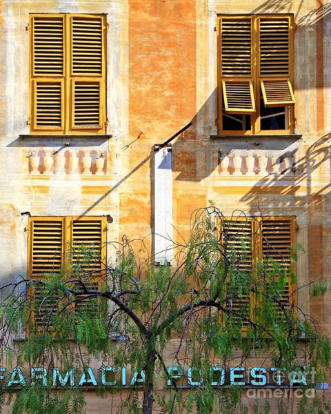 Poster featuring the photograph Chiavari Windows by Kate McKenna