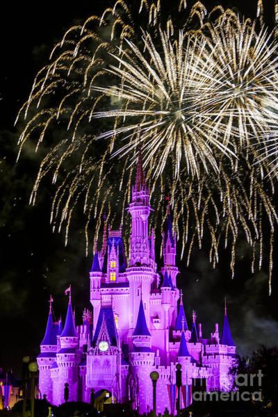 Magic Kingdom Cinderella Castle Poster