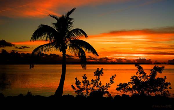 Conch Key Bay Sunset Poster
