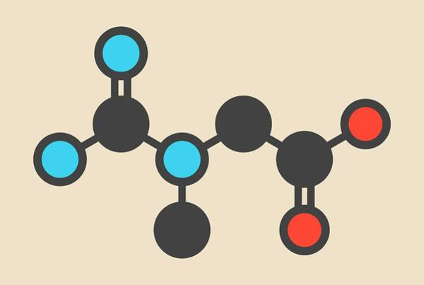 Creatine Molecule Poster