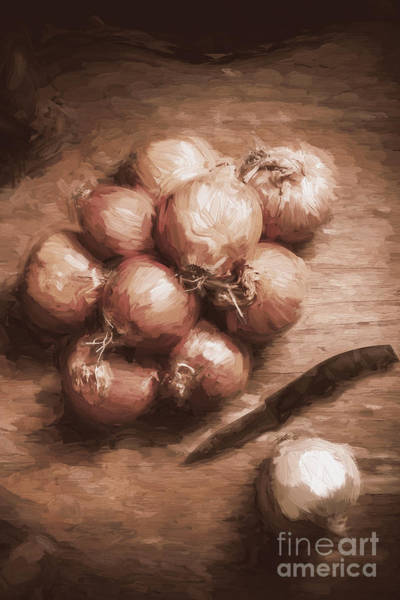 Digital Painting Of Brown Onions On Kitchen Table Poster