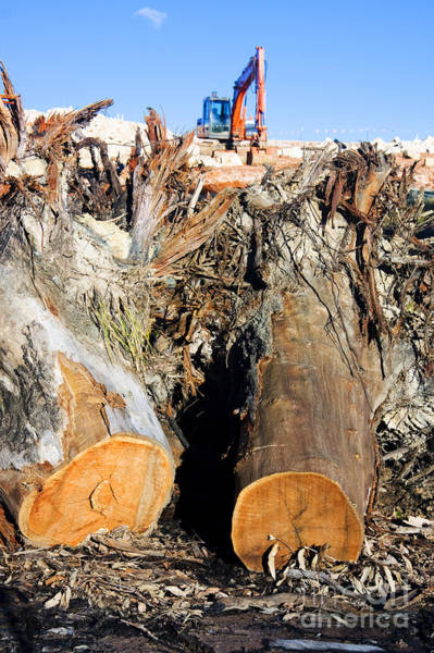 Environmental Destruction In Construction  Poster