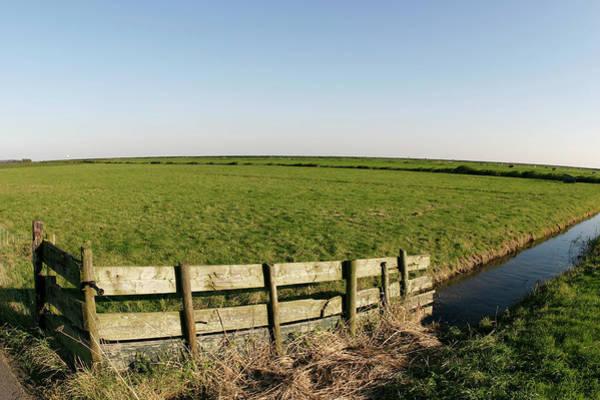 Farmland In Holland Poster