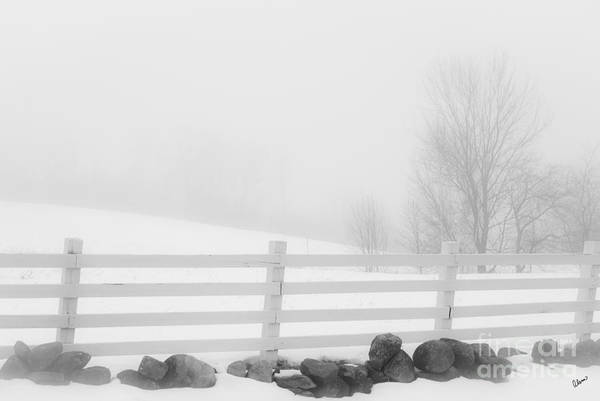 Foggy Winters Day Poster
