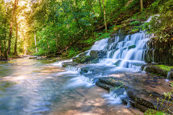 Forest Stream And Waterfall Poster