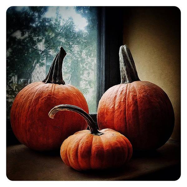I Love Pumpkins Poster