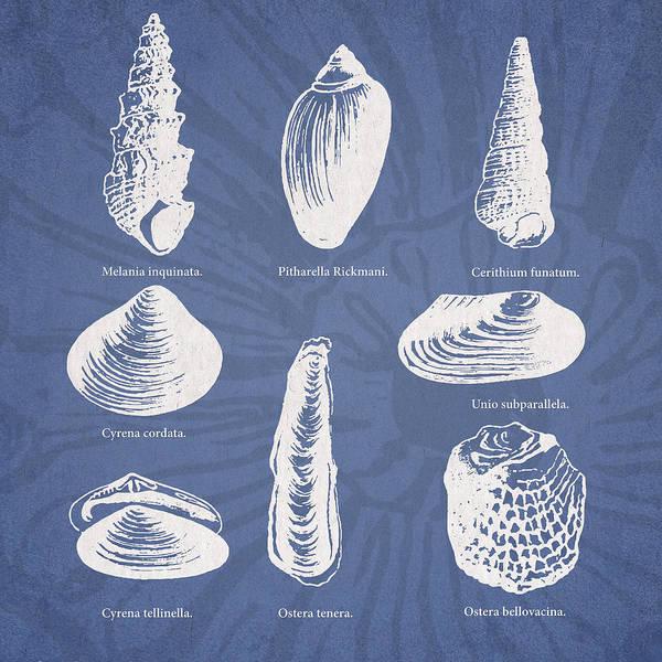 Invertebrates Poster