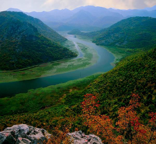 Lake Skadar. Montenegro Poster