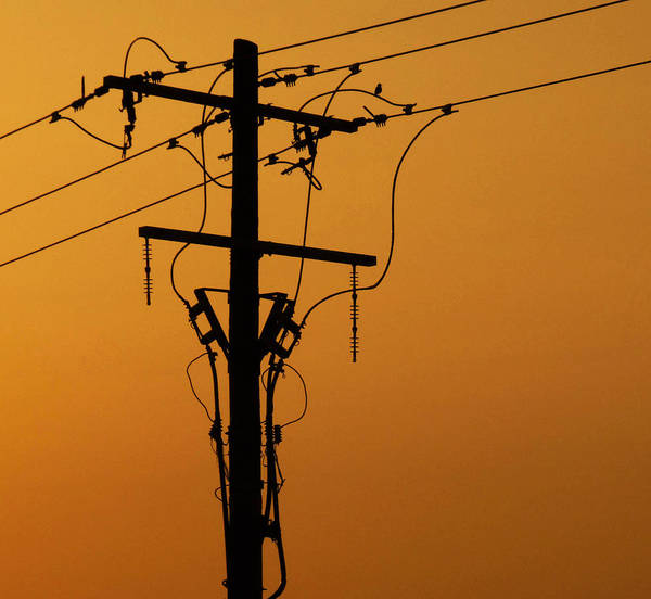 Power Line Sunset Poster