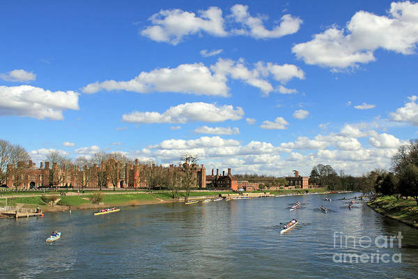Rowing On The Thames At Hampton Court Poster
