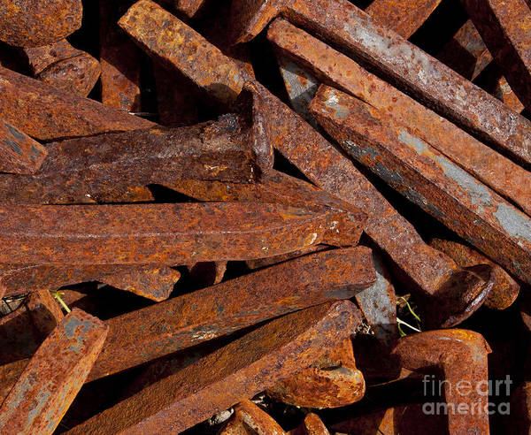 Rusty Railroad Spikes   #1158 Poster